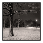 snow night study 8 clapham common