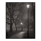 night study 6 clapham common